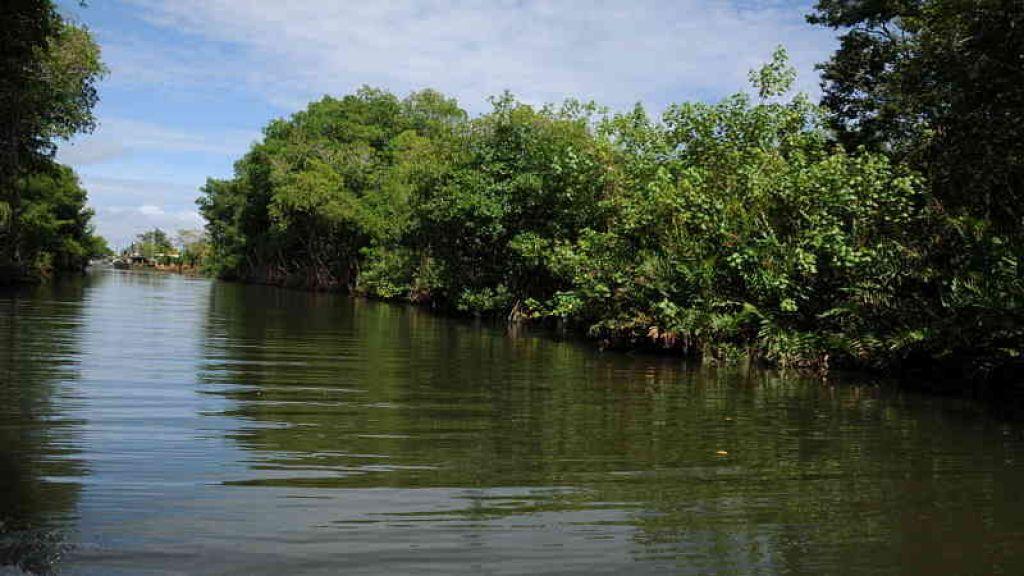 Photo of Cumbre Departamental del Agua, una apuesta el por recurso hídrico