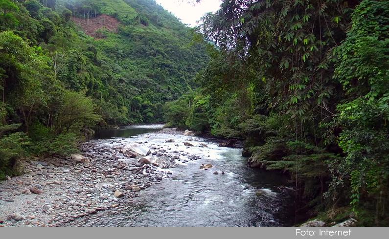 Photo of Primera expedición de biodiversidad en el Oriente Antioqueño