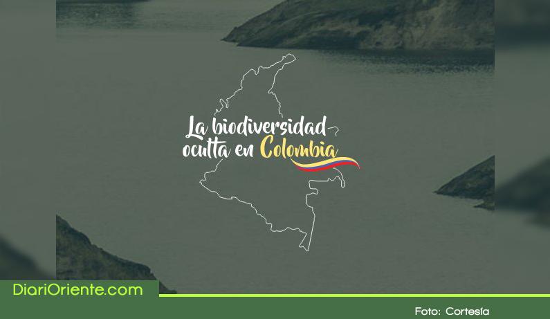 Photo of Se entregaron los resultados de la primera expedición Bio de Antioquia.