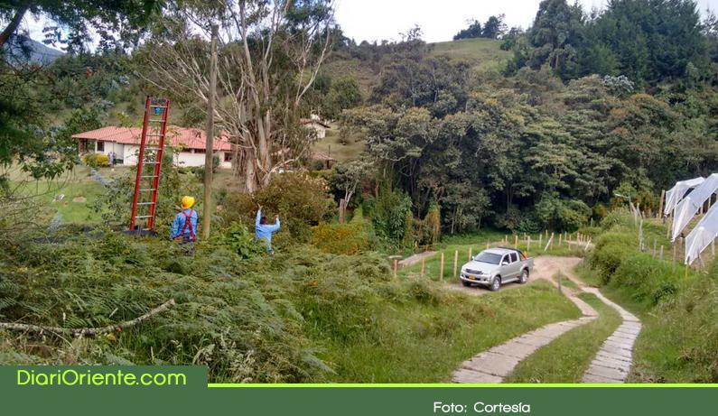 Photo of Varios sectores de La Ceja afectados por robo del alumbrado público