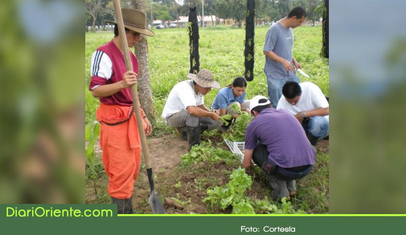 Photo of Jóvenes de zonas rurales pueden aspirar a beca para estudiar Ingeniería Agronómica