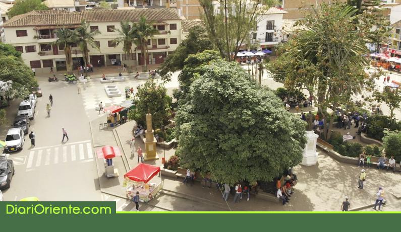 Photo of Preocupación por envenenamiento de palomas en el parque de Marinilla
