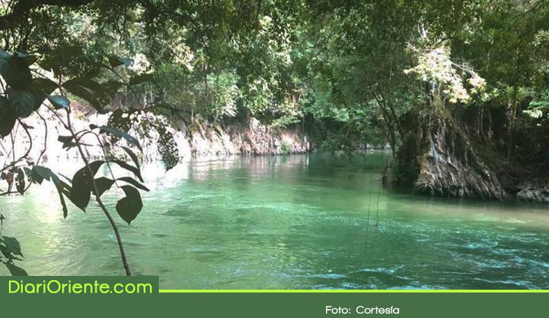 Photo of El paraíso de los pantágoras ahora es un área protegida
