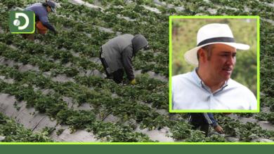 Photo of ISAGEN donará $700 millones a la Provincia ABT, para el fortalecimiento productivos agropecuario del Oriente