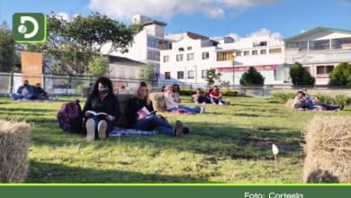 Photo of ¡Prográmese! Picnic literario y cine al parque en la Plaza de La Libertad de Rionegro
