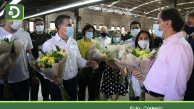 Photo of Nuevas inversiones al sector: 17.000 empleos directos generan los cultivos de flores en el Oriente Antioqueño