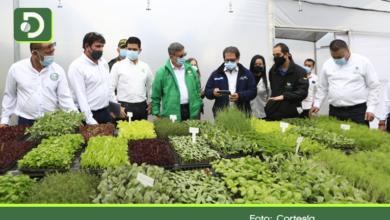 Photo of Agricultura del  siglo XXI: En Marinilla comenzó a funcionar la primera ciudadela agrotecnológica de Antioquia