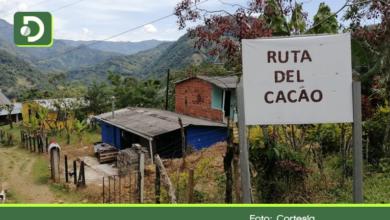 Photo of Familias víctimas de conflicto armado crean la «Ruta del Cacao» como apuesta turística