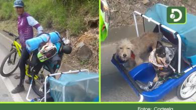 Photo of Video: Hombre y sus dos perros recorren el país en bici, así fue su paso por el Oriente Antioqueño