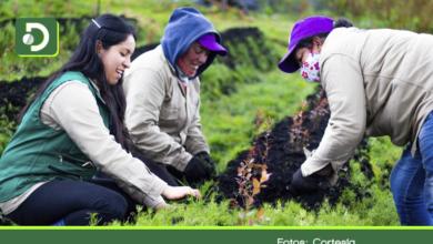 Photo of Abren convocatoria por $8 mil millones para financiar emprendimientos de mujeres rurales